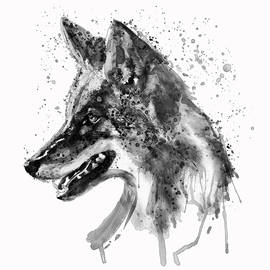 Coyote Head Black and White by Marian Voicu