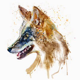 Marian Voicu - Coyote Head