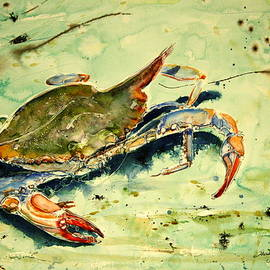 Crabby Appleton by Shirley Sykes Bracken