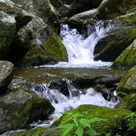 Crabtree Falls - Tyro, VA