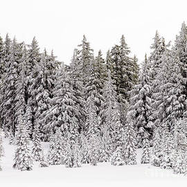 Crater Lake Snow 1a by Tracy Knauer