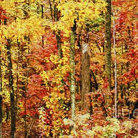 Darren Fisher - Crayola Autumn