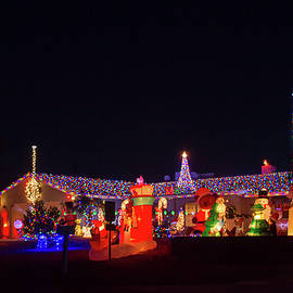 Bonnie Follett - Crazy Christmas Lights 2