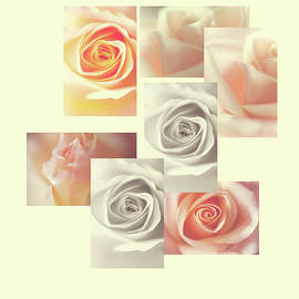 Jenny Rainbow - Creamy Dreamy Roses Collage