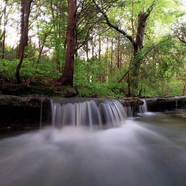 Tyler Schlitt - Creek Waterfall