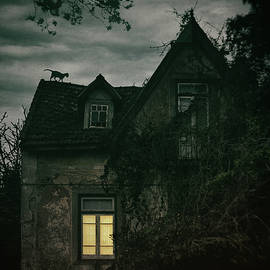 Carlos Caetano - Creepy House with Cat