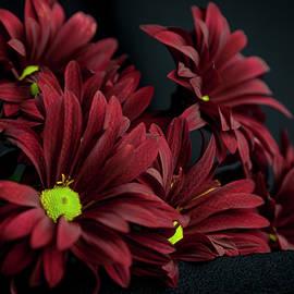 Crimson Lime by Eric Christopher Jackson