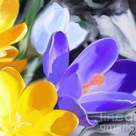 Aline Halle-Gilbert - Crocus in L