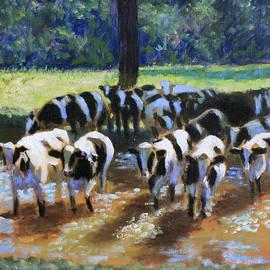Crossing the Jordy by David Zimmerman