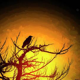 Ken Morris - Crow Resting in Sunset