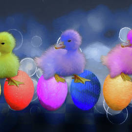 John Haldane - Cuddly Ducklings