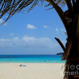 Culebra Flamenco Beach Puerto Rico  Paradise by Charlene Cox