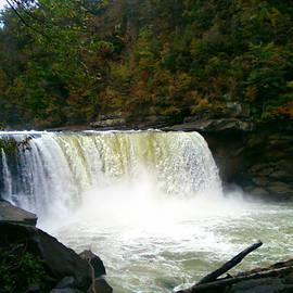 Pat Turner - Cumberland Falls II