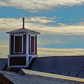 Cupola at Winsome Farm Organics by Nancy Griswold