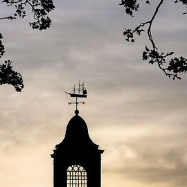 Cupola Silhouette by Janice Drew