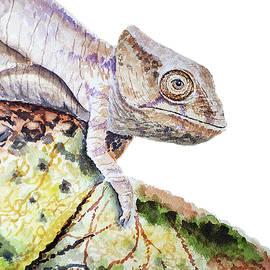 Irina Sztukowski - Curious Baby Chameleon