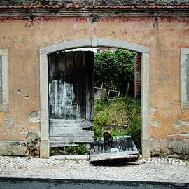 Marco Oliveira - Curious Cat Exploring An Abandoned Place