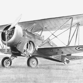 Curtiss Hawk 3