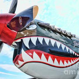 Curtiss P-40K The Warhawk  by Paul Ward