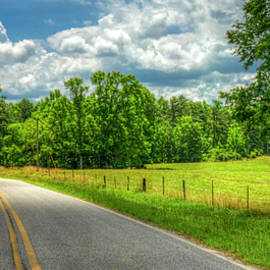 Reid Callaway - Curves Ahead The Understatement Roadway Art