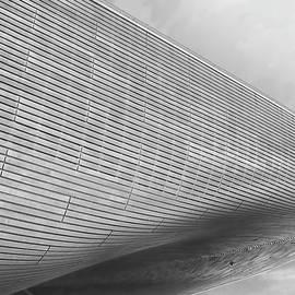 Curves - Martin Newman