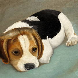 Cute Beagle by Angeles M Pomata