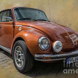 Cute Old Beetle by Eva Lechner