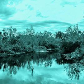 Madeline Ellis - Cyan Dreaming - Sarasota Pond