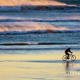 Cyclist Pedals Against The Wind At Pismo Beach by Sharon Foelz