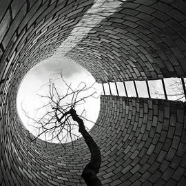Tom Druin - Cylindrical