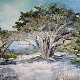 Lori Pittenger - Cypress at Carmel Beach