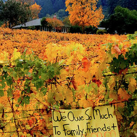 D8b6314 Autumn At Jack London Vinyard With Thanks To Firefighters Ca by Ed Cooper Photography