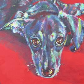 Dachshund on Red by Karin McCombe Jones