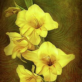 Gladiolus in Springtime by George Moore