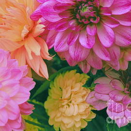 Dora Sofia Caputo Photographic Design and Fine Art - Dahlia Bouquet Pop Art