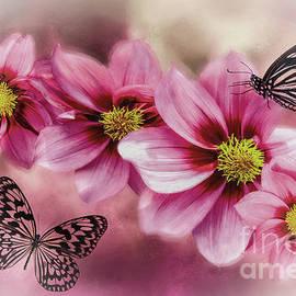 KaFra Art - Dahlias and Butterflies
