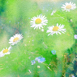 Daisies and Forget Me Not by Lynn Bolt