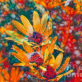 Luther Fine Art - Daisy Color Pop