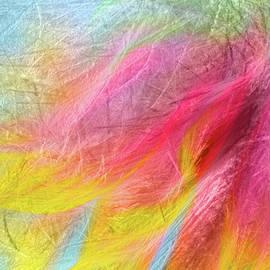 Terry Davis - Daisy in the Wind