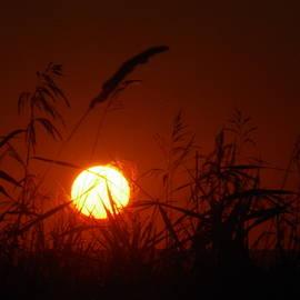 Dakota Sunset by Jeff Swan