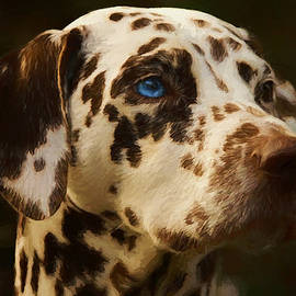 Dalmatian - Painting by Ericamaxine Price