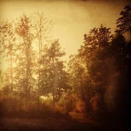 Damals.#herbst #nostalgie #autumn