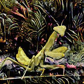 Dance of the Mantis by Susan Maxwell Schmidt