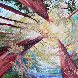 Cedar Lee - Dance of the Redwoods