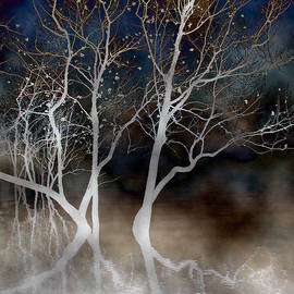 Dancing Tree Altered by Paula Guttilla