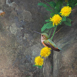 R christopher Vest - Dandelion, Bee And Hummer