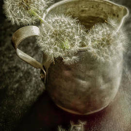 Dandelions in Pitcher-Textured by Kathleen K Parker