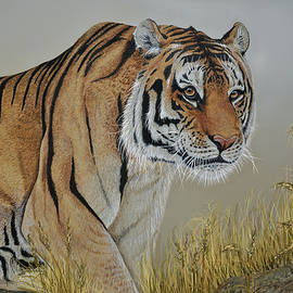 Martin Wilneff - Dangerous Encounter Siberian Tiger
