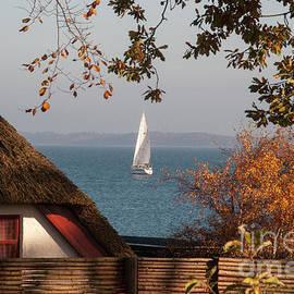 Kim Lessel - Danish Autumn Sea View