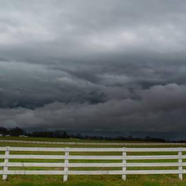 Ally White - Dark Skies
